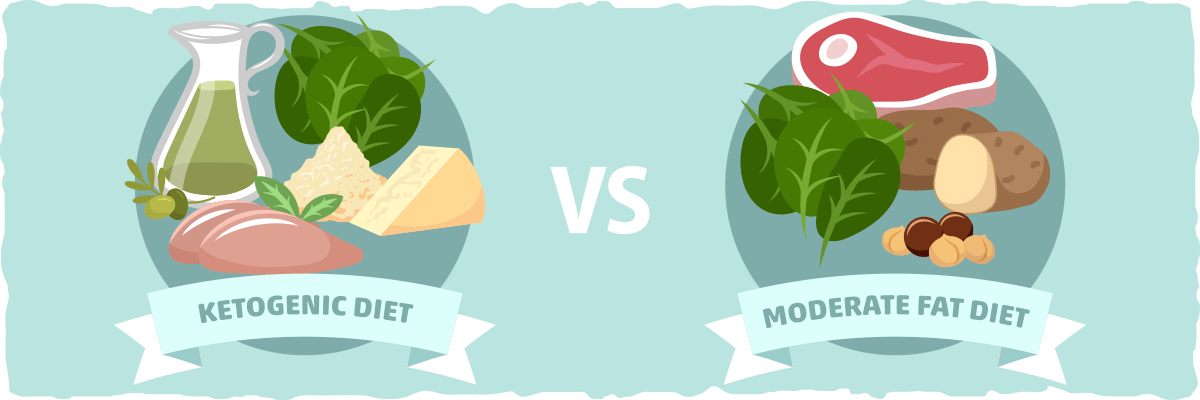 Side by Side Comparison: Ketogenic vs. Moderate Fat Diet