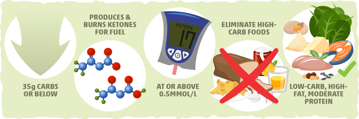 The Low Carb Diet vs. the Ketogenic Diet – The Technical Differences
